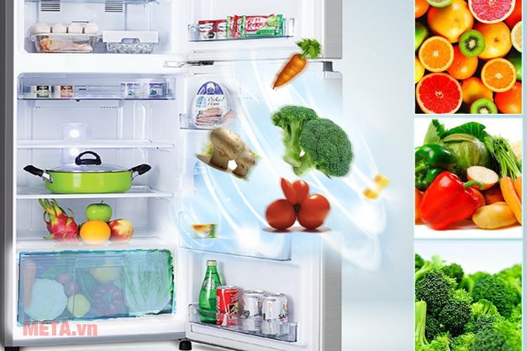 Ngăn rau quả giữ ẩm tốt giúp rau quả gia đình bạn luôn tươi ngon