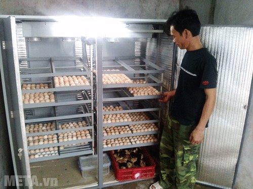 Máy ấp trứng Matech có khả năng ấp 3000 trứng/mẻ, sử dụng cho các trang trại quy mô lớn