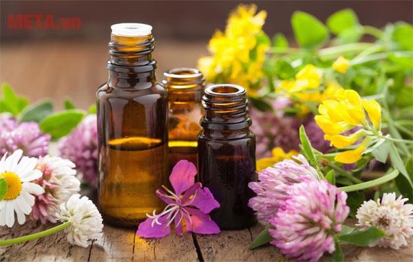 Tinh dầu mang đến nhiều giá trị hữu ích đến sức khỏe người dùng.
