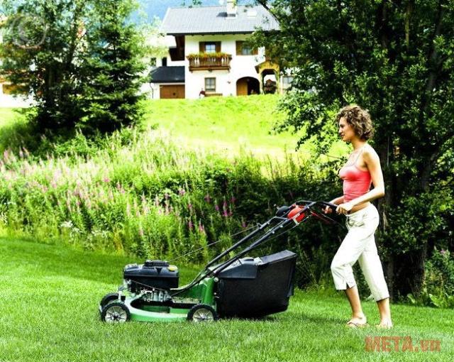 Hình ảnh máy cắt cỏ dạng xe đẩy