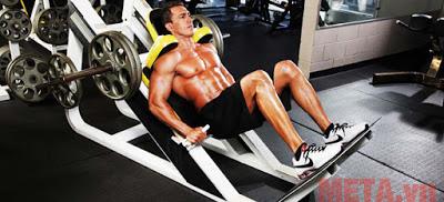 Máy tập đùi thích hợp cho các cơ bắp chân ngoài