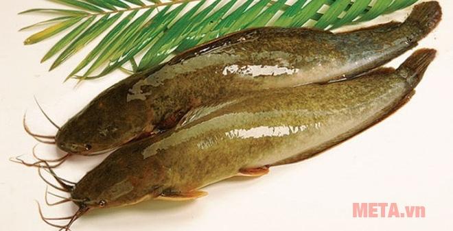 Chuẩn bị cá trê để nướng bằng lò vi sóng