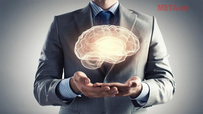 Tác dụng bổ não