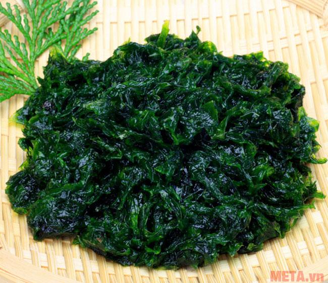 Hình ảnh tảo Nhật