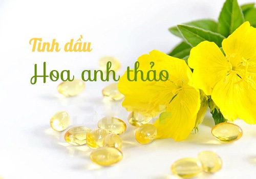 hoa anh thảo
