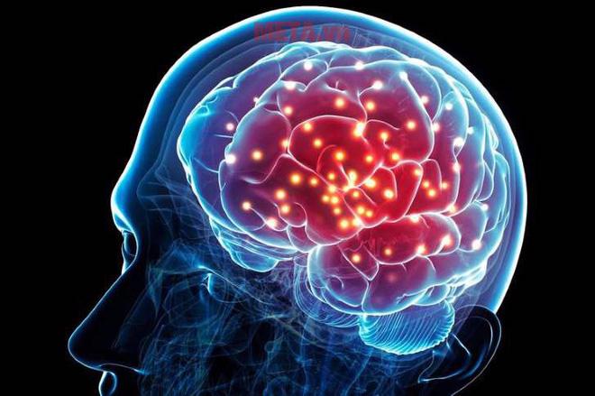 Tác dụng đối với não