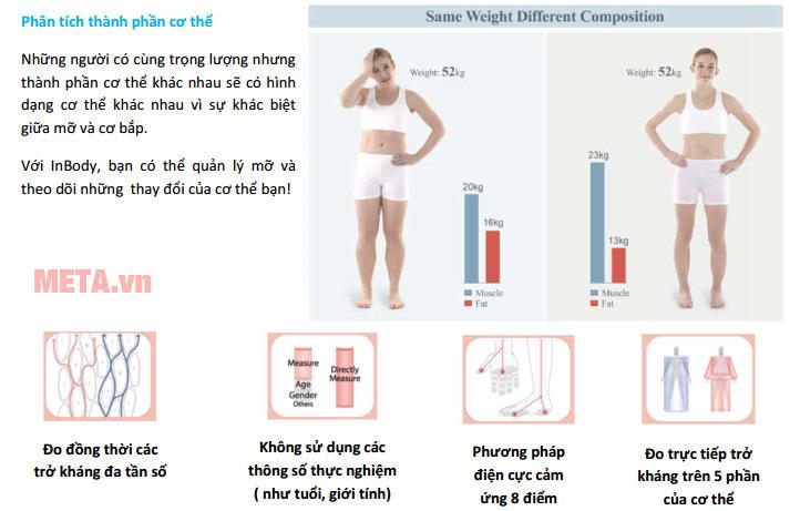Máy phân tích thành phần cơ thể Inbody Dial