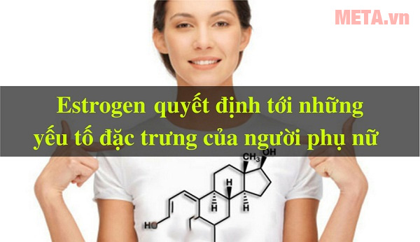 Top thực phẩm chức năng bổ sung nội tiết tố cho phái nữ