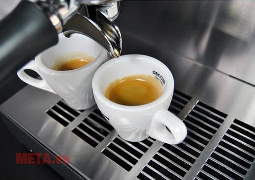 Máy pha cà phê pha 2 tách cùng lúc