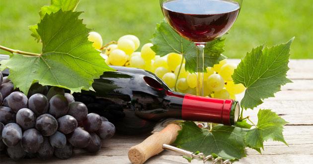 Rượu vang được làm từ nho lên men, là loại thức uống hảo hạng được nhiều người yêu thích