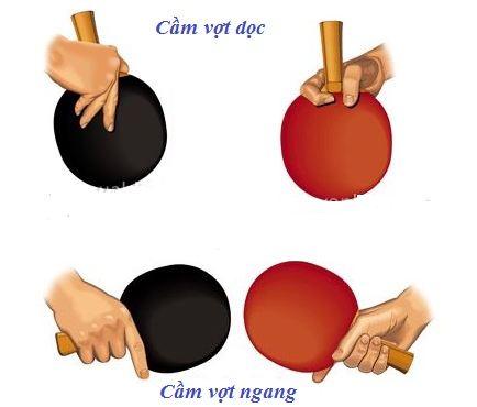 kỹ thuật đánh bóng bàn