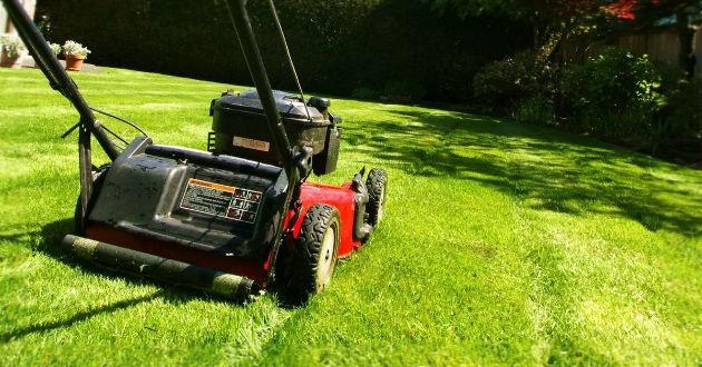 Máy cắt cỏ xe đẩy có bánh xe tiện lợi, giúp cắt cỏ nhanh, không tốn sức.