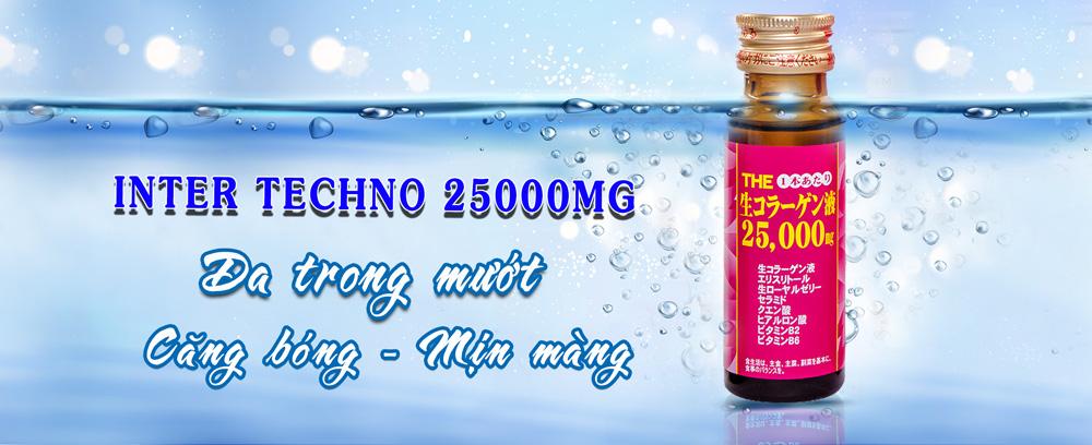 Collagen Inter Techno 25000mg