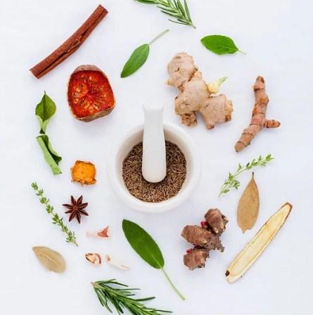 Các loại thảo mộc tự nhiên dùng làm nến thơm hương thảo mộc