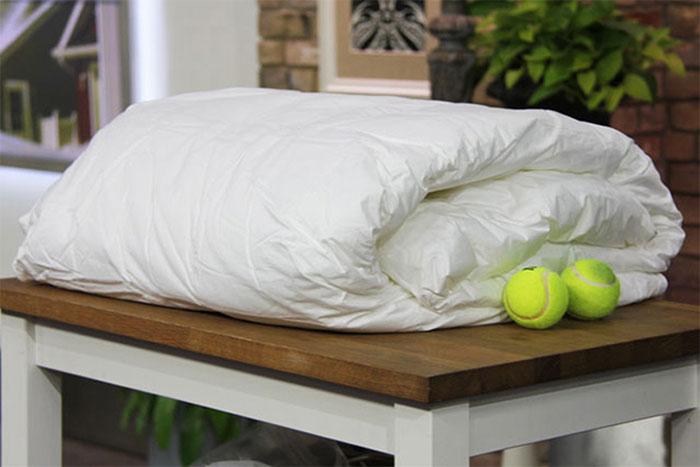 Cho bóng tennis vào trong 30 phút sấy khô