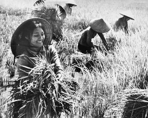 Phụ nữ Việt Nam giỏi việc nước đảm việc nhà
