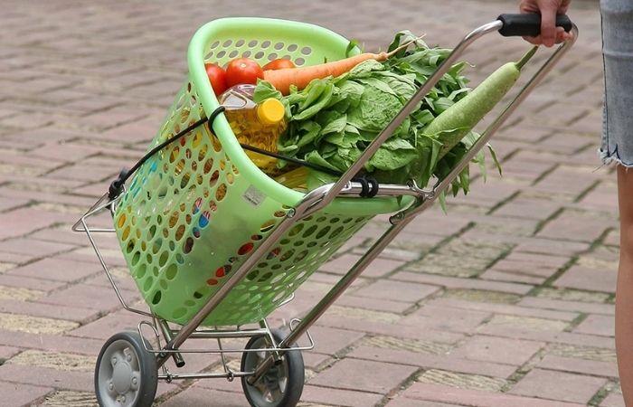 Xe kéo đi chợ cũng là một món quà hữu ích đối với người lớn