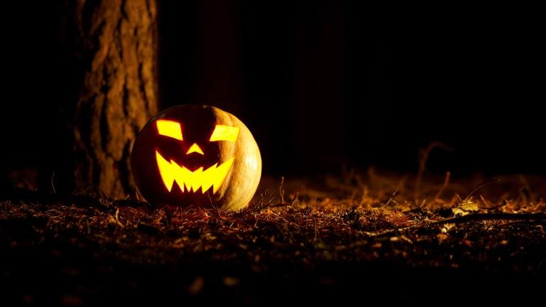 Bí ngô Halloween được trang trí trong nhà, ngoài vường để xua đuổi tà ma, cầu may mắn