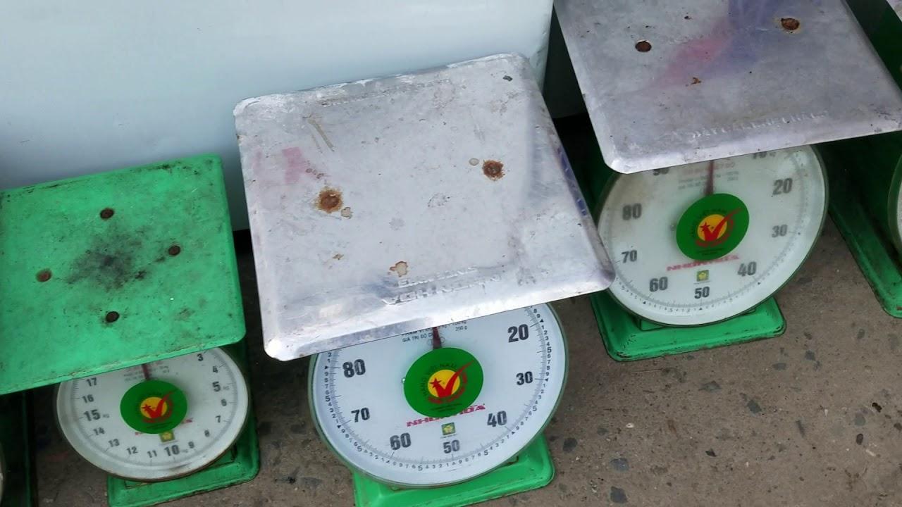 Giá cân Nhơn Hòa có cao không?