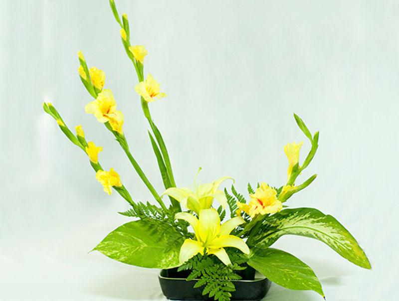 Cách cắm hoa ly đẹp ngày Tết