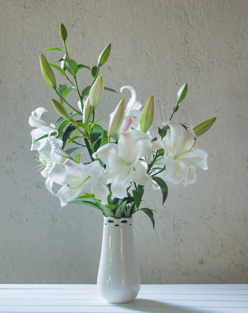 Cách cắm hoa ly ngày Tết tươi lâu