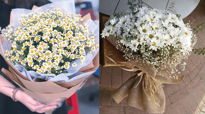 Một số mẫu bó hoa cúc họa mi đẹp
