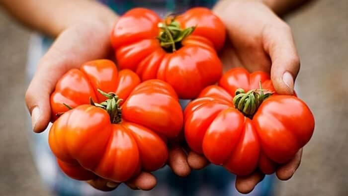 Thực phẩm organic có hương vị thơm ngon