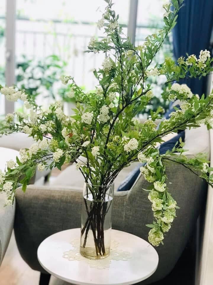 Mẫu cắm hoa Kodemari