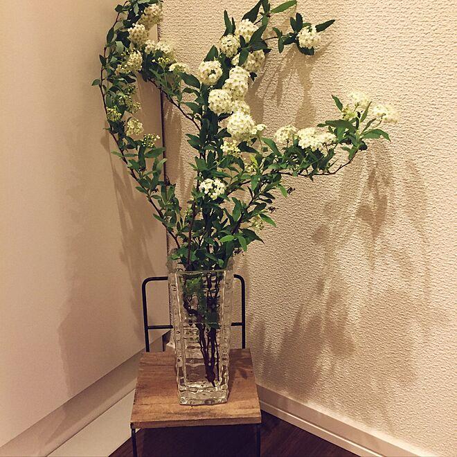 Bình hoa tiểu tú cầu