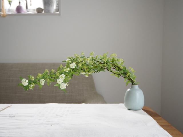 Cách cắm hoa tiểu túc cầu Kodemari