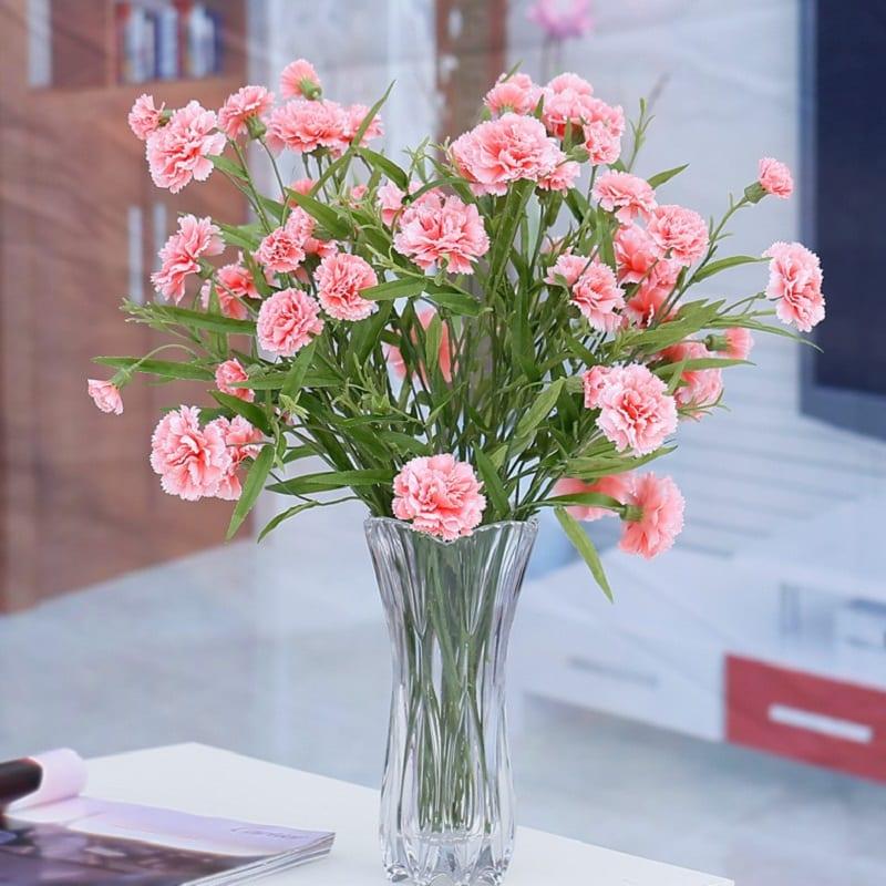 Bình hoa cẩm chướng đẹp