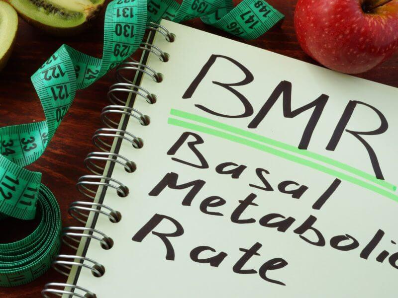 Ý nghĩa của chỉ số BMR