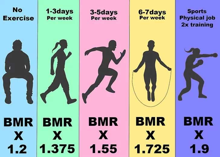 Chỉ số BMR phụ thuộc nhiều vào mức độ tập luyện, vận động
