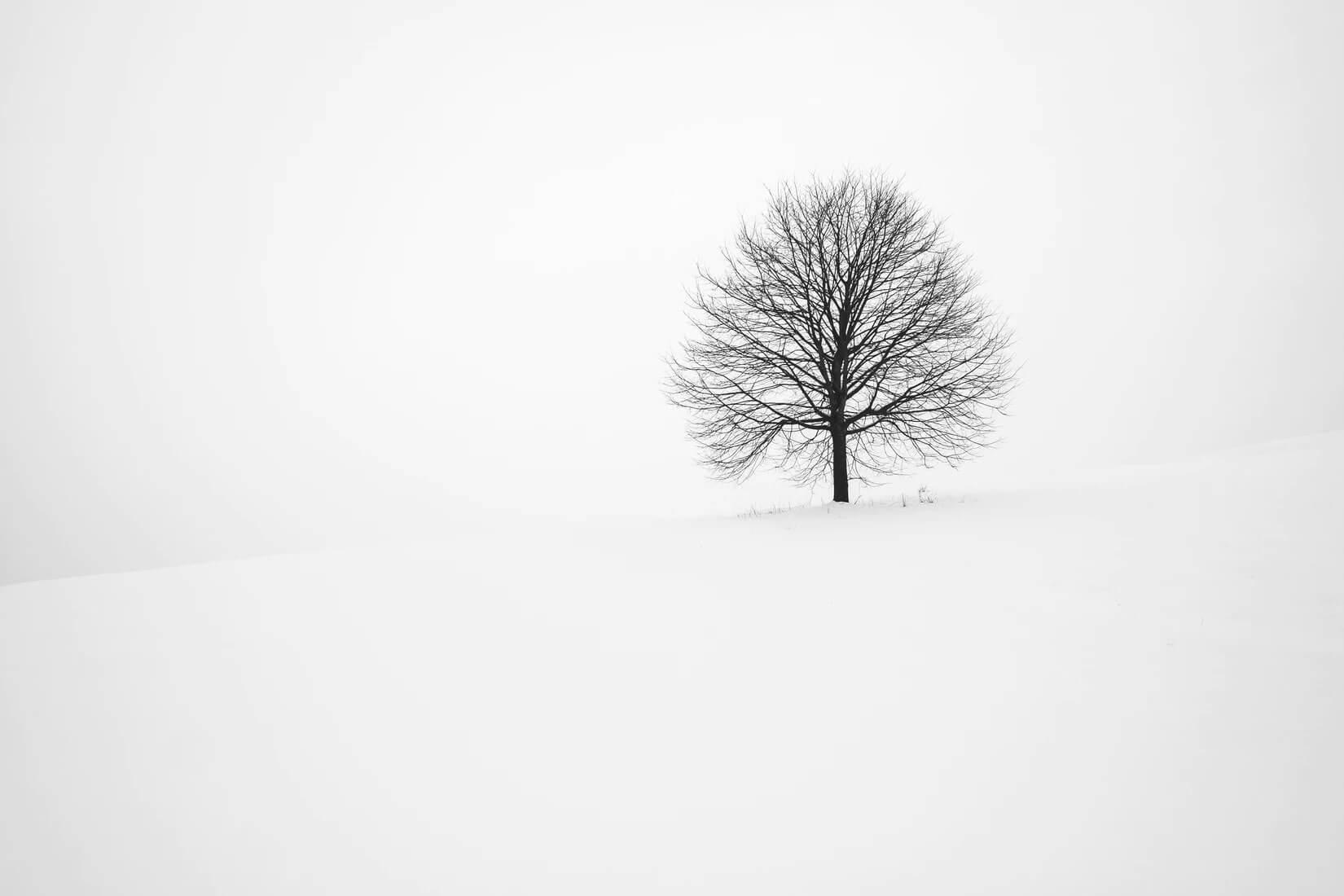 Avatar đen trắng đẹp