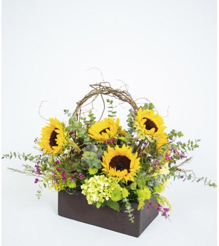 Cắm hoa hướng dương nghệ thuật