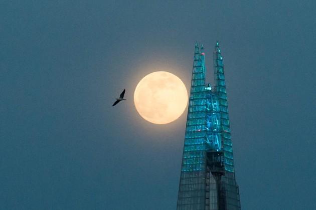 Siêu trăng hồng năm 2020 tại London.