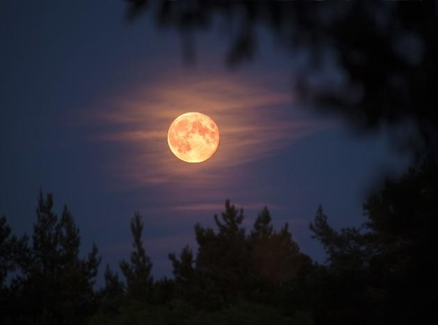 Mặt Trăng vào ngày siêu trăng hồng trông có vẻ to và sáng hơn, nhưng không có màu hồng.