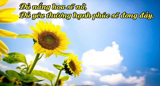 Những bài thơ về cuộc sống vui tươi, lạc quan