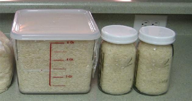 Bảo quản gạo trong hộp kín