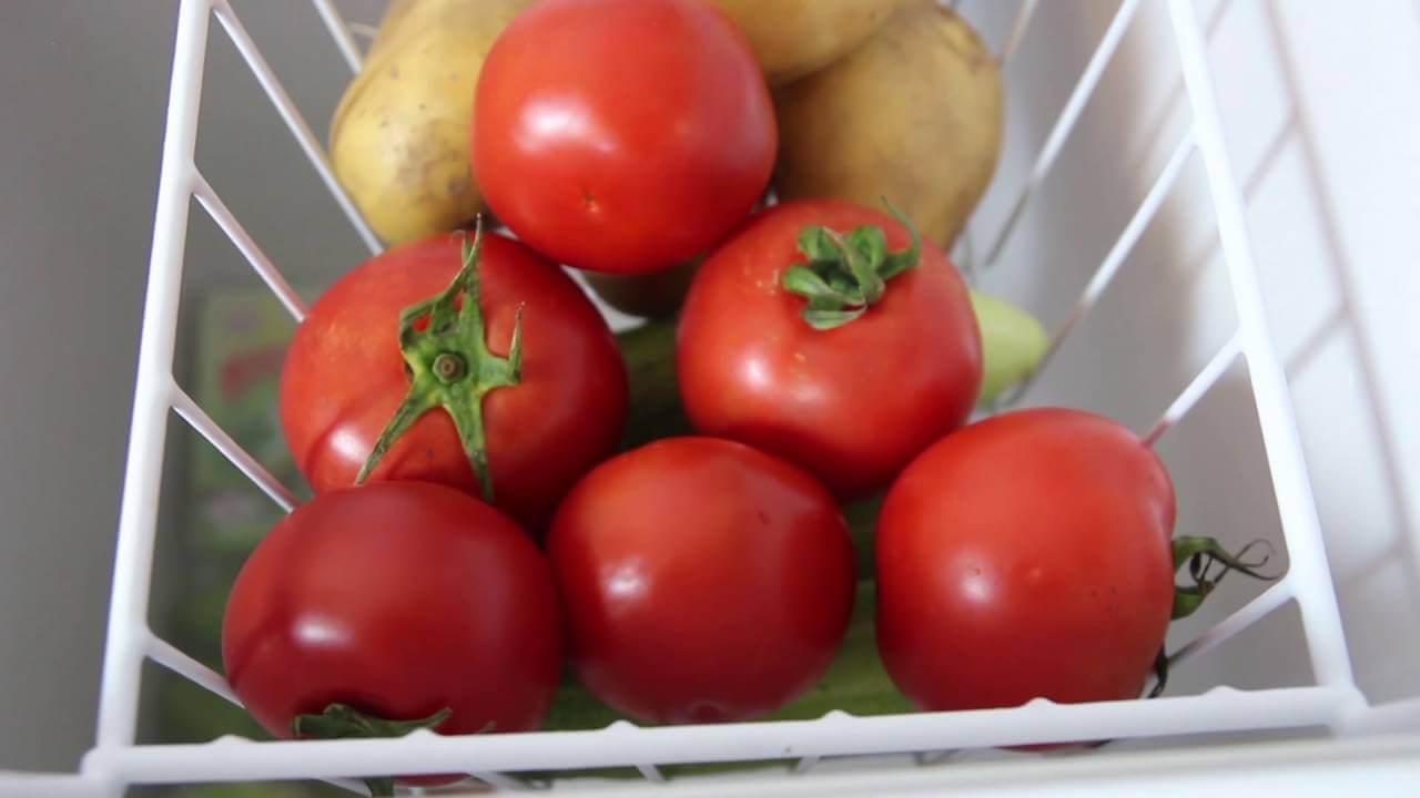 Tủ đông mini Hòa Phát HCF 106S1ĐSH 100 lít dàn đồng bảo quản thức ăn tươi ngon