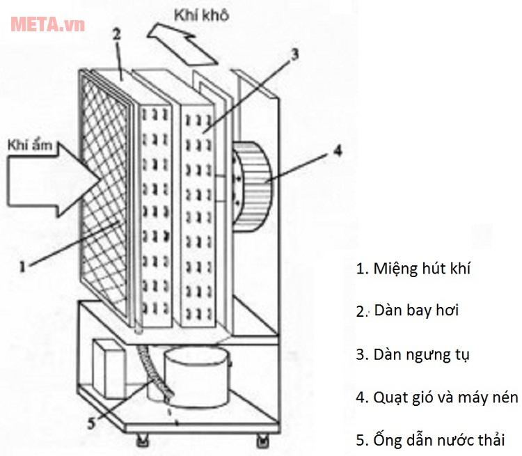 Nguyên lý hoạt động của máy hút ẩm dạng ngưng tụ.
