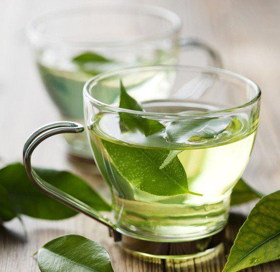 lá trà xanh có tác dụng gì? tác dụng của lá trà xanh với sức khỏe và làm đẹp